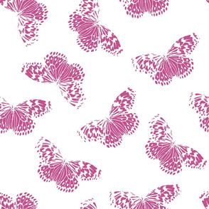 Butterfly | purple