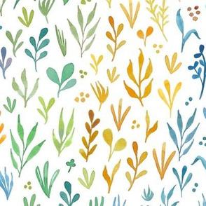 Watercolor botanicals - rainbow - medium scale