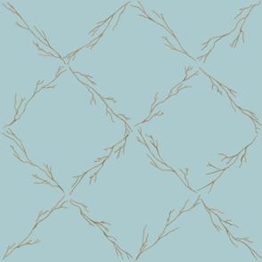 Branch lattice on Malibu