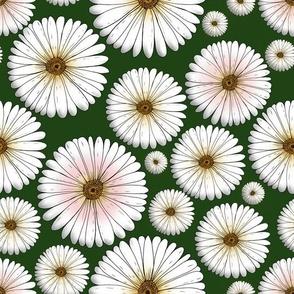 daisy meadow - darkgreen