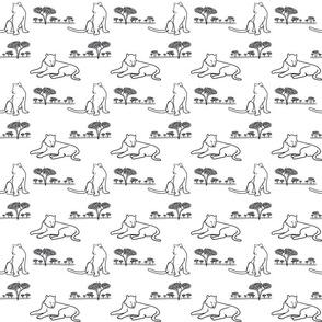 Safari Cats in grays