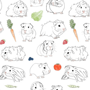 Guinea Pigs and Vegetables