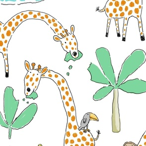 SAFARI GIRAFFES
