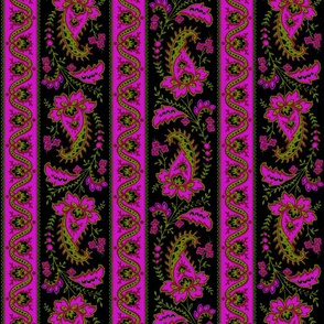 Esmeralda Paisley Stripe ~ Fuchsia  on Black