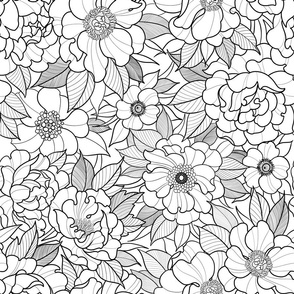 Flower field black and white