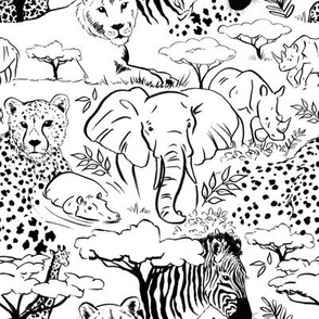 African Animal Sketches