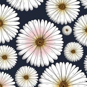 Daisy on dark petrolcolor