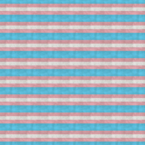 Transgender LGBTQI stripes, Small