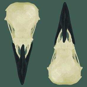 Large Raven Skulls on Green