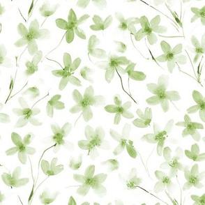 Khaki dainty cherry blossom - watercolor flowers