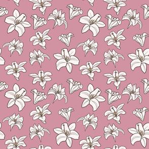 Lily Spring Wallpaper