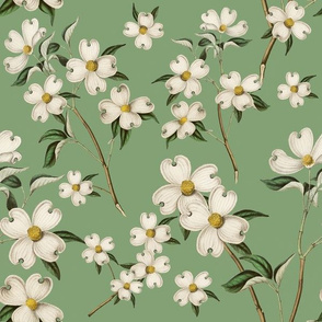 WHITE DOGWOOD (GREEN)