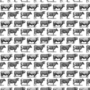 Classic Cow Illustrations Black & White Pattern (Small Scale)