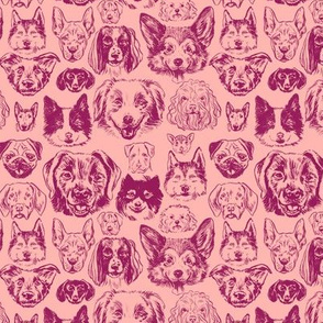 dogs - small scale raspberry
