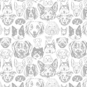 dogs - small scale grey