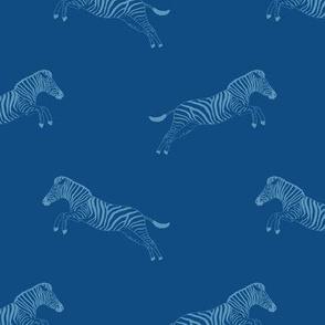 Jumping zebra life in blue