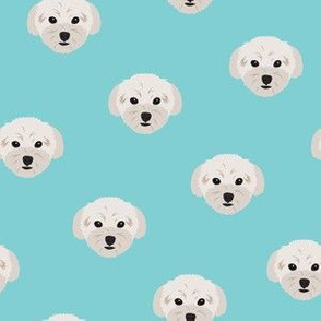 Small Maltese Dogs Pattern - Turquoise