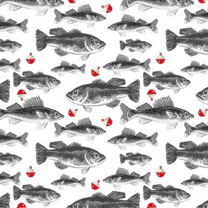 Bobber Fish