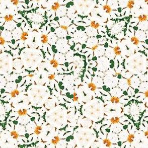 White Flower Kaleidoscope