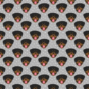 Rottweilers - gray
