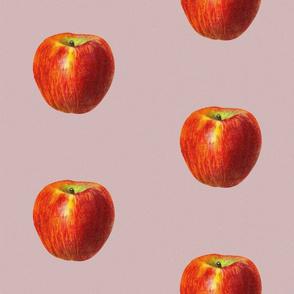 Vintage apples - red & pink