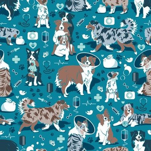 Small scale // VET medicine happy and healthy Aussie friends // turquoise background aqua details navy blue white and brown Australian Shepherds dogs