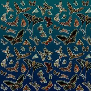 Moonlight butterflies