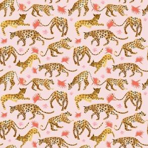 Jaguars In Pink