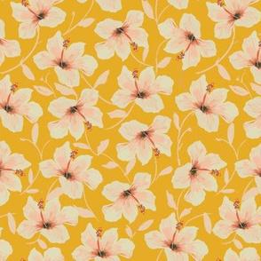 Sweet Golden Hibiscus