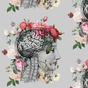 Anatomical Brain on Gray
