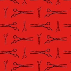 Hair Cutting Shears in Black with Red Background