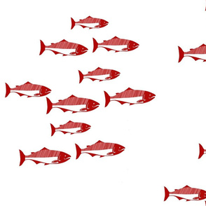 Alaskan Red Salmon