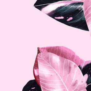 Philodendron Pink Princess - Pink Botanical Pattern