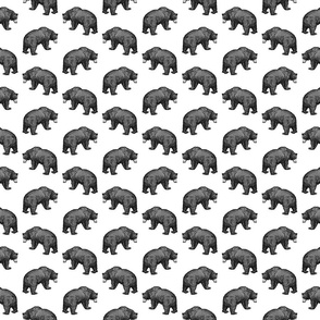 Bears in Black & White (Small Scale)