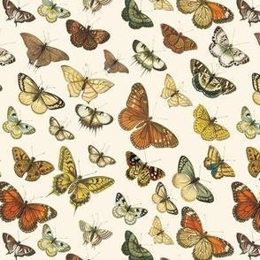 Butterflies Au Naturel 02 // Standard
