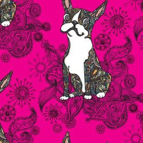 Boston Terrier Bright Hot pink