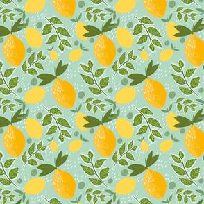 citrus symphony
