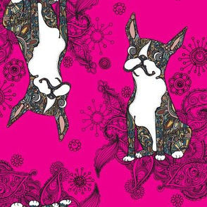 Boston Terrier Topsy Turvy Hot Pink