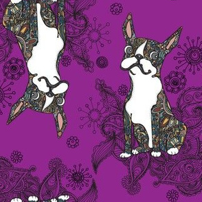 Boston Terrier Topsy Turvy Purple