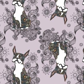 Boston Terrier Topsy Turvy Lavendar