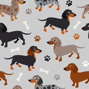 Dachshund Dogs Paws and Bones Gray