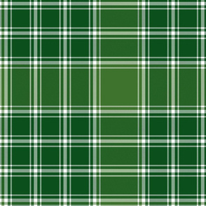 "MacDonald, Lord of the Isles, 12"" green"