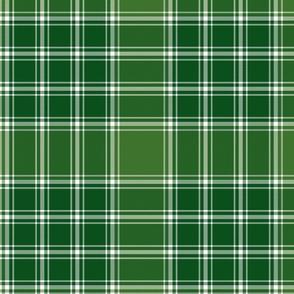 "MacDonald, Lord of the Isles, 10"" green"
