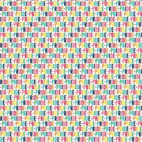 pride ULTRA small rainbow with navy UPPERcase