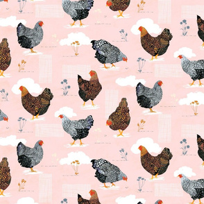 Backyard chickens Pink - Small Scale
