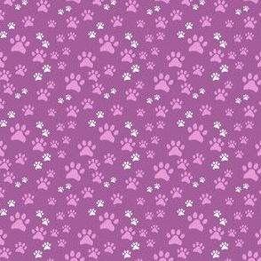 Pink Pawprints on Dark Pink