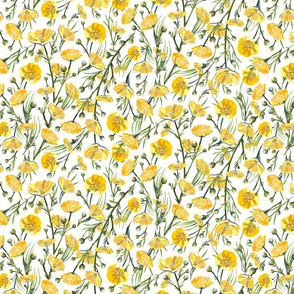 Ditsy Buttercups | White