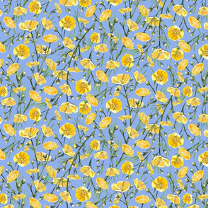 Super Micro Ditsy Buttercups | Warm Blue