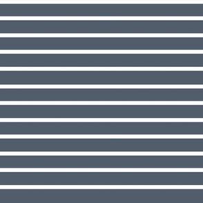 Stripes on Navy 4.6