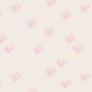Delicate Aloe Vera plants succulent garden boho summer island vibes off white pink